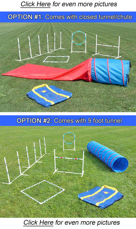 Agility In A Bag Set Dog Agility Starter Kit